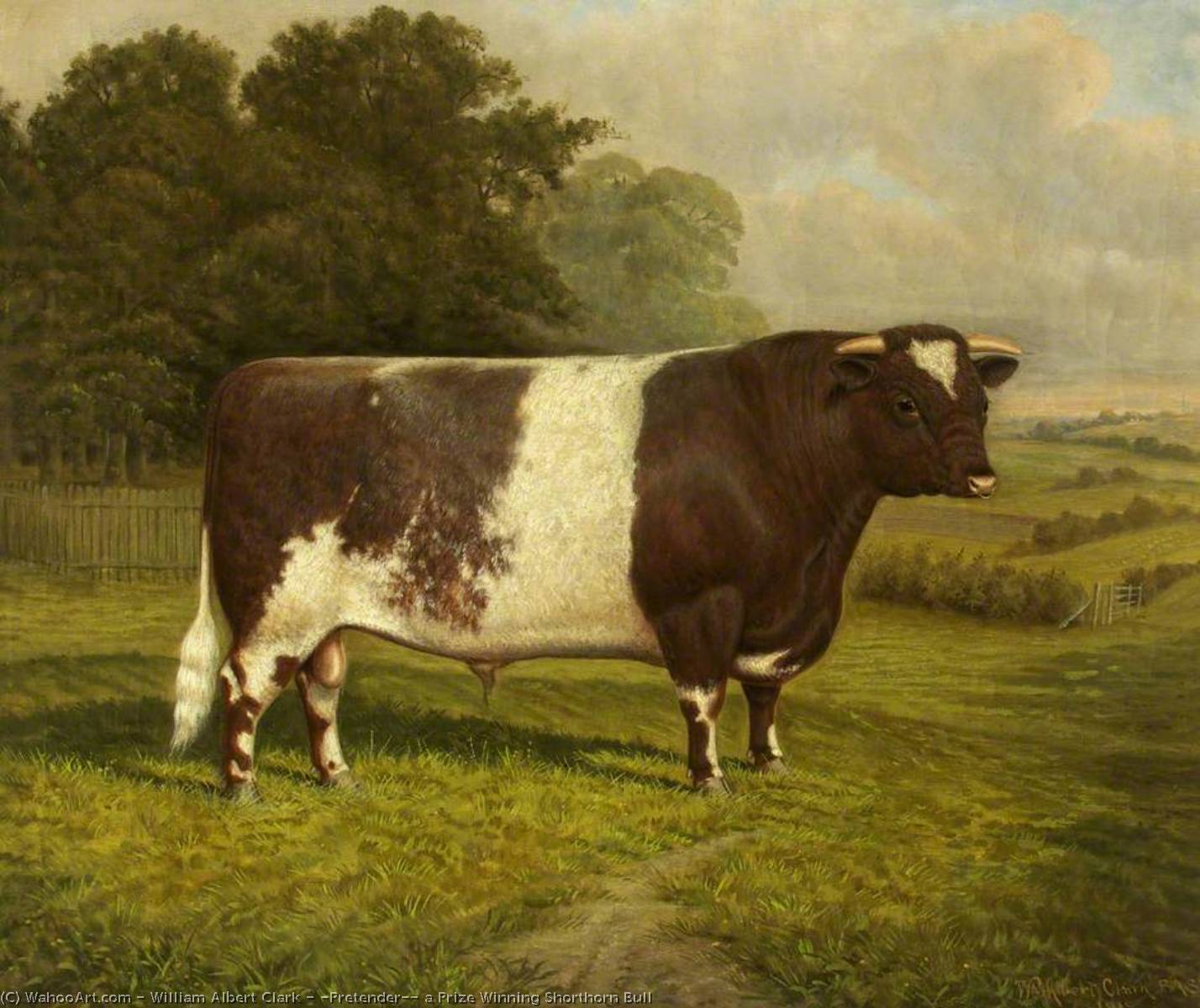 Cattle  Simple English Wikipedia the free encyclopedia