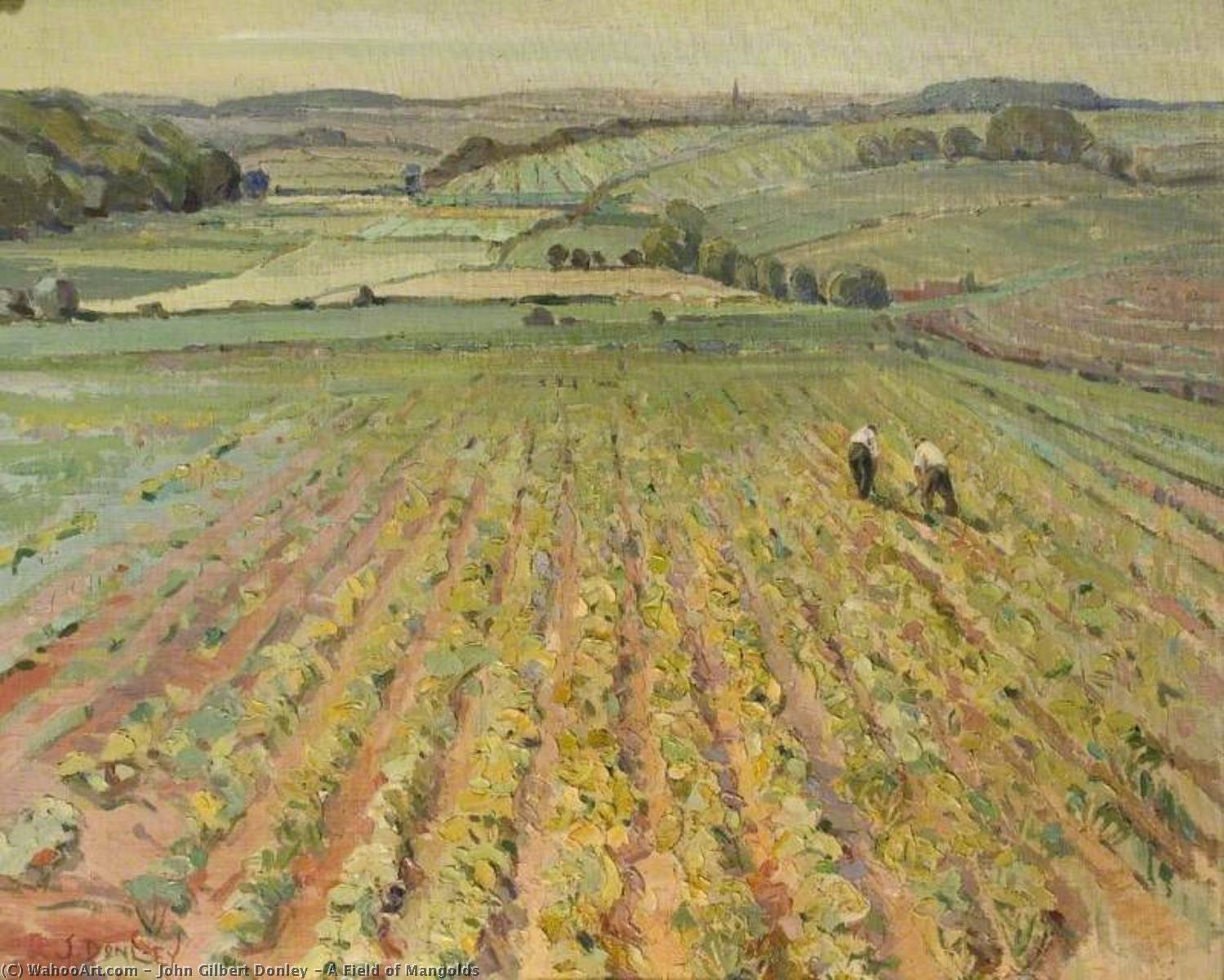 A Field of Mangolds, Oil On Canvas by John Gilbert Donley