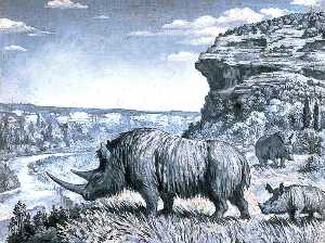 Margaret Maitland Howard - Dioramas of Pleistocene, 'Tieharhiuus antiquitatis' (Woolly Rhinoceros)
