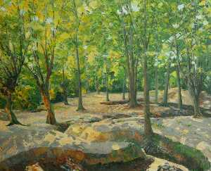 Herbert H Newton - Track of Forest Brook