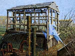Gary Sargeant - Kitchen Lane Allotments, Beverley, East Riding of Yorkshire (2)