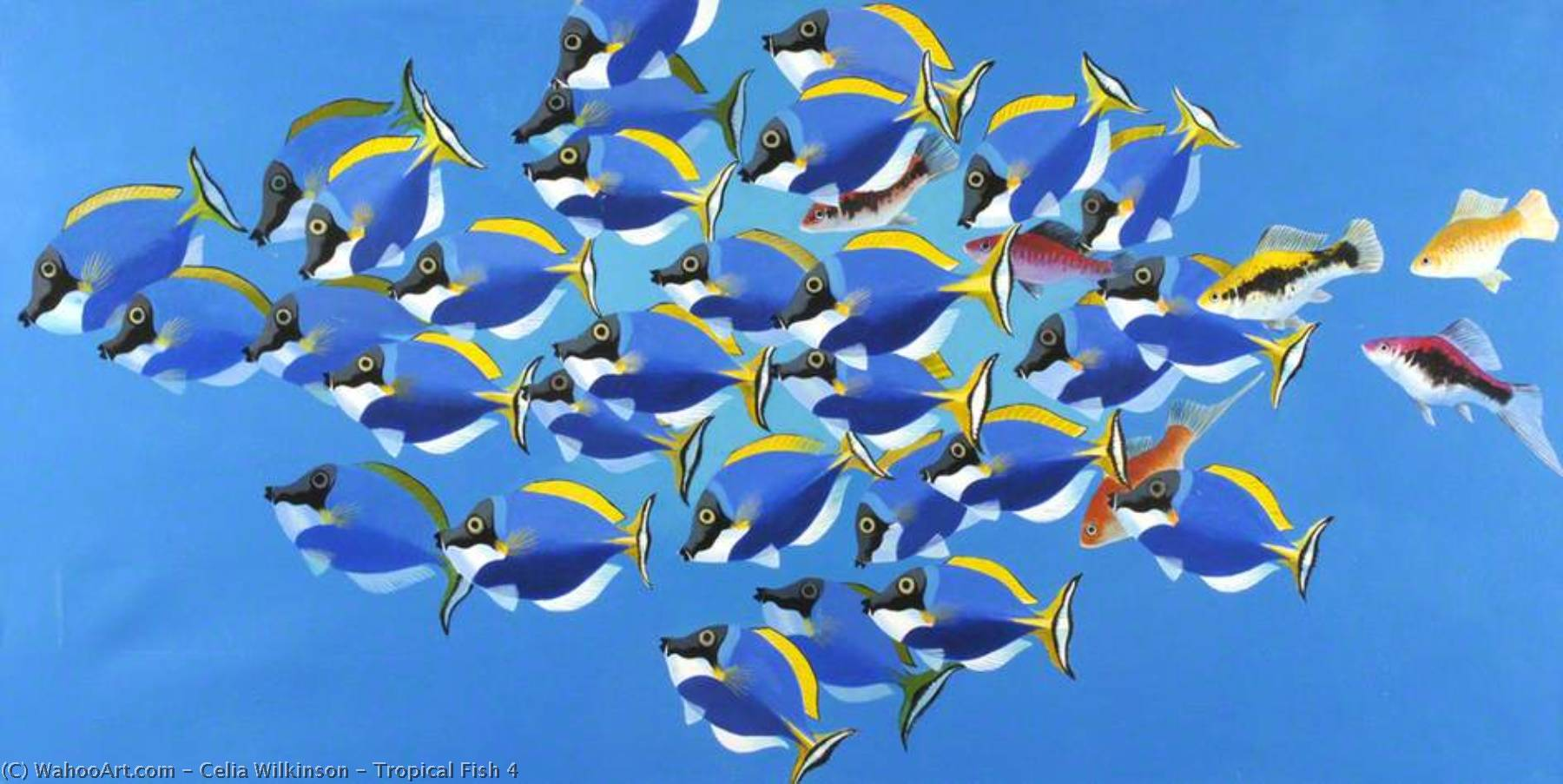 Tropical Fish 4 by Celia Wilkinson | Painting Copy | WahooArt.com