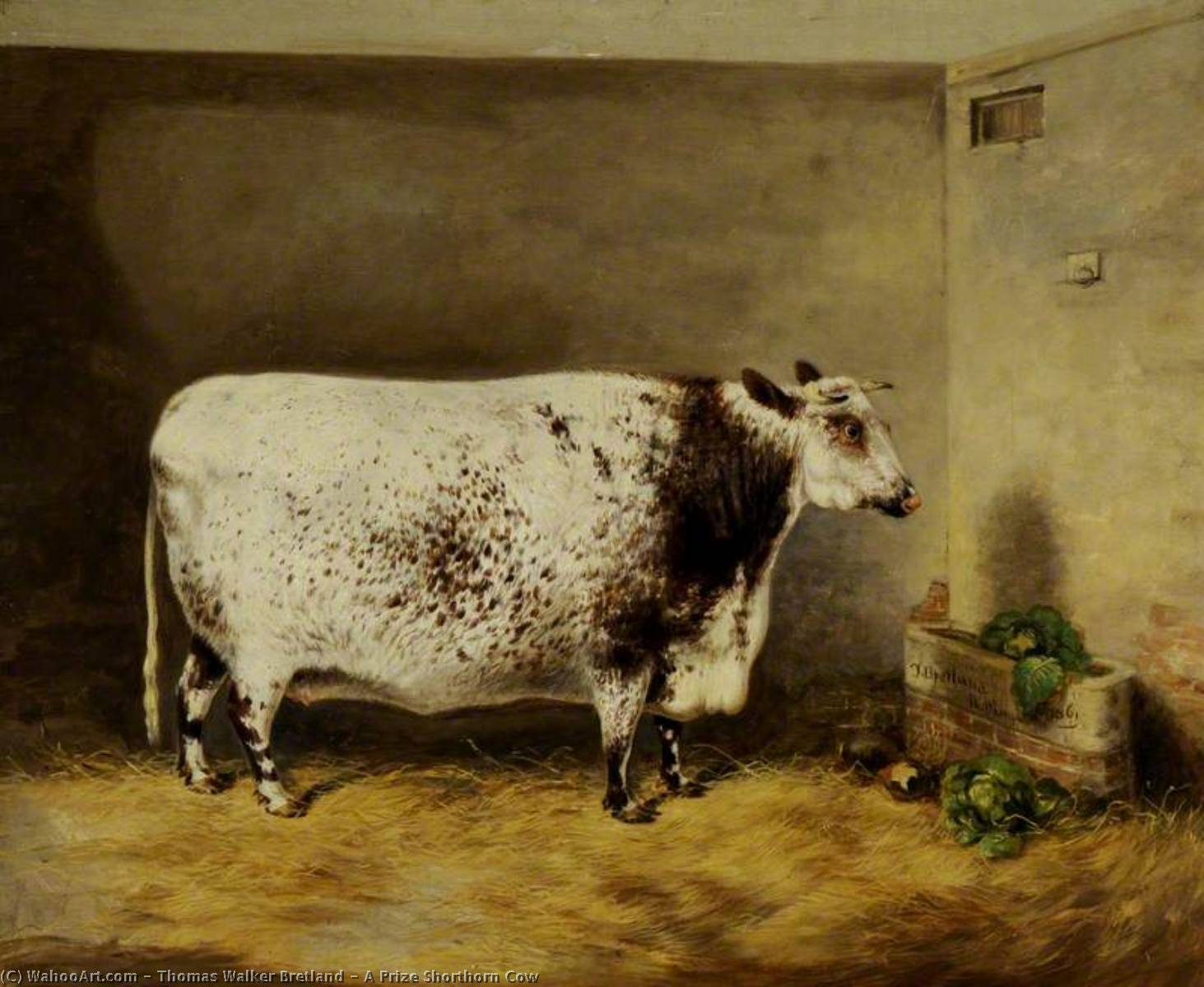 A Prize Shorthorn Cow, 1861 by Thomas Walker Bretland | Oil Painting | WahooArt.com