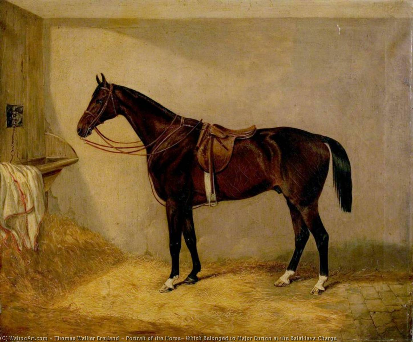 Portrait of the Horse, Which Belonged to Major Burton at the Balaklava Charge by Thomas Walker Bretland | Art Reproduction | WahooArt.com