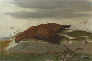 Robert Harrington - Game Study Red Grouse in a Landscape