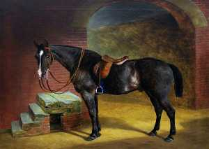 Thomas Grimshaw - A Saddled Dark Bay Hunter by Mounting Steps