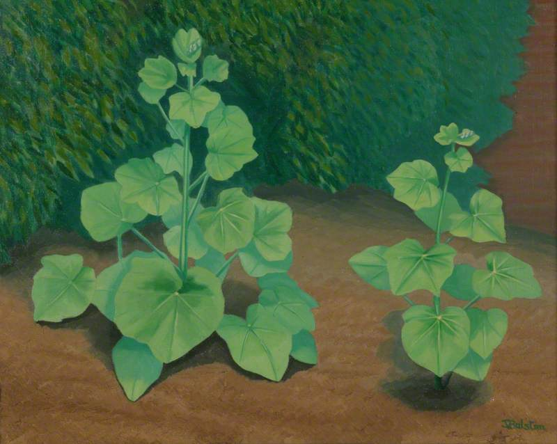 Young Hollyhocks, 1938 by Thomas Balston | Oil Painting | WahooArt.com
