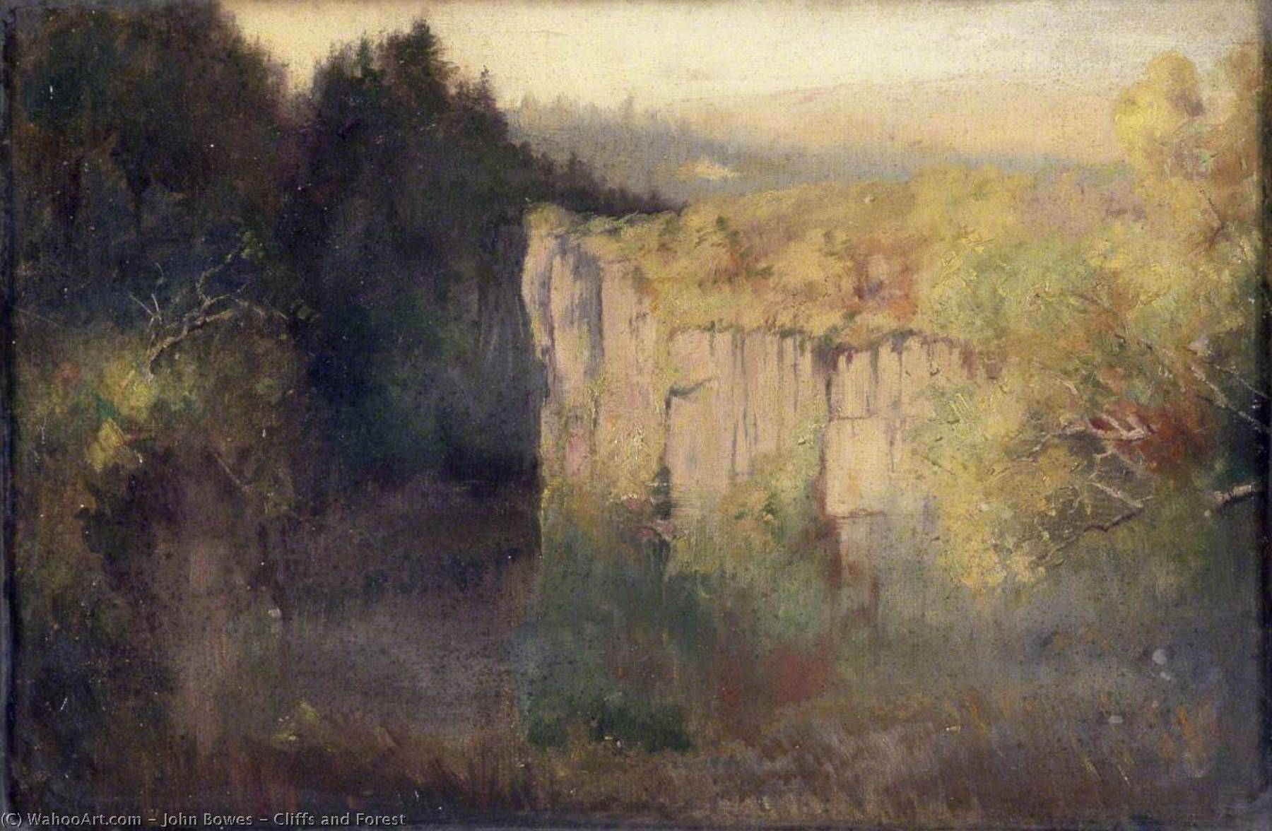 Cliffs and Forest, Oil On Canvas by John Bowes