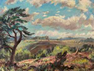 Miles Balmford Sharp - Woodbury Common, Devon