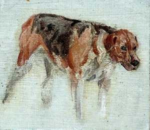 Muriel Elise Crooke - Sketch of a Dog