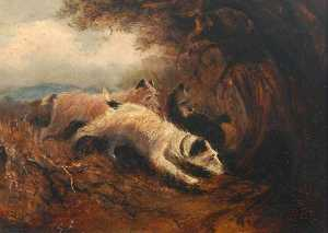 George Algernon Fothergill - Hunt Terriers (1)
