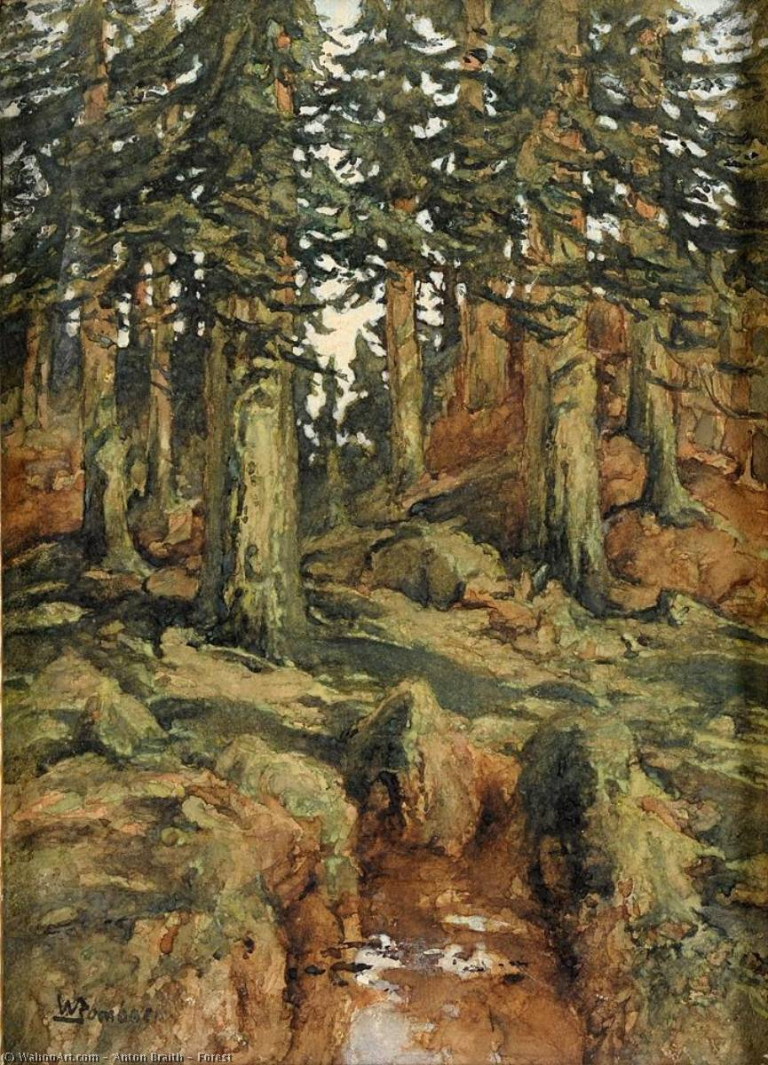 Forest by Anton Braith (1836-1905) | Art Reproduction | WahooArt.com