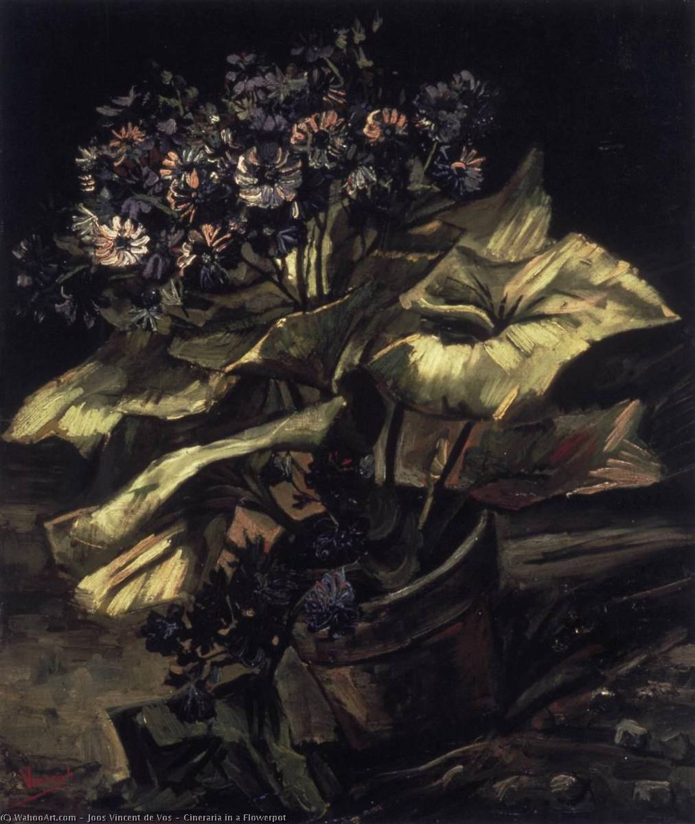 Cineraria in a Flowerpot, Oil On Canvas by Joos Vincent De Vos (1853-1890, Netherlands)