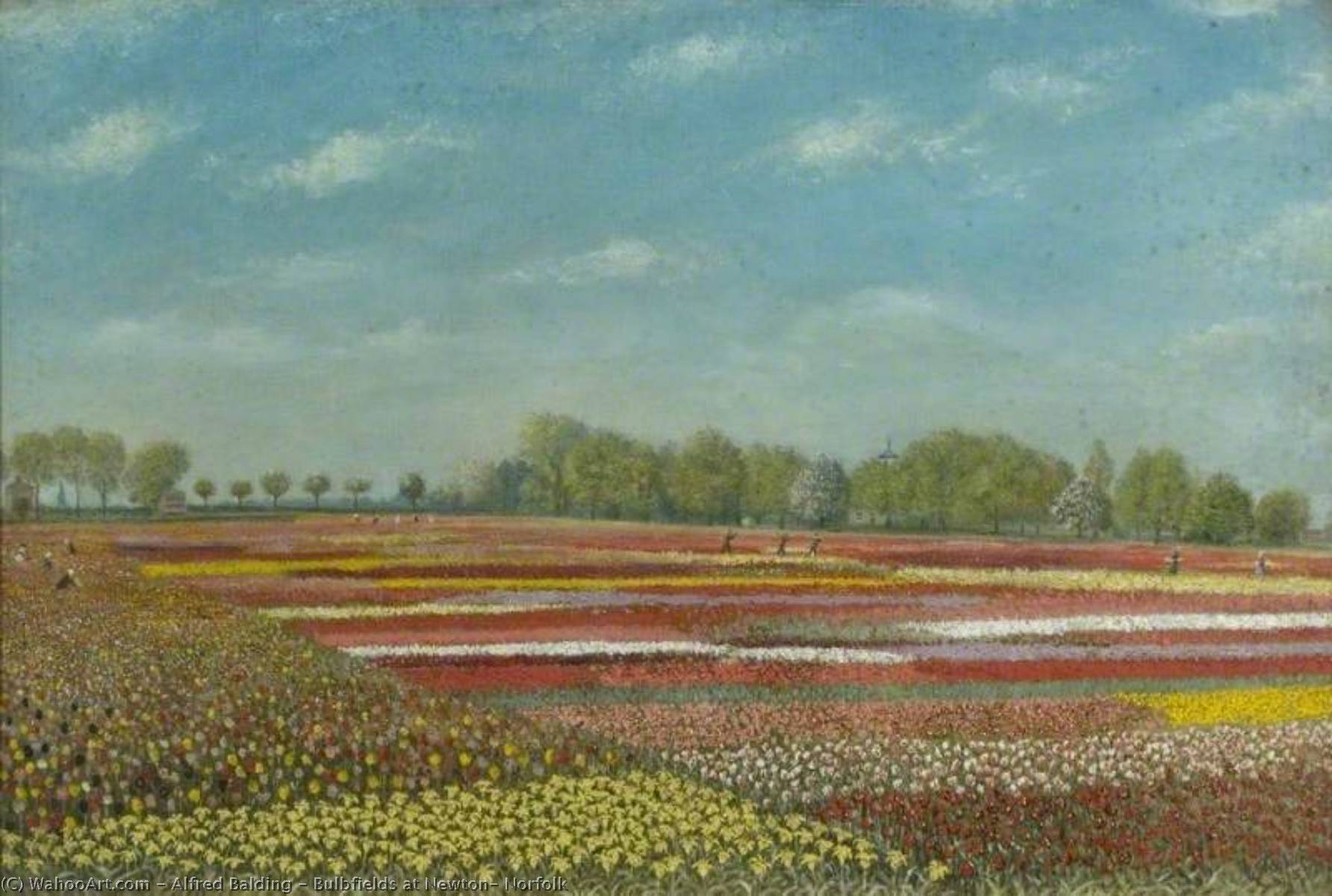 Bulbfields at Newton, Norfolk by Alfred Balding | Art Reproduction | WahooArt.com