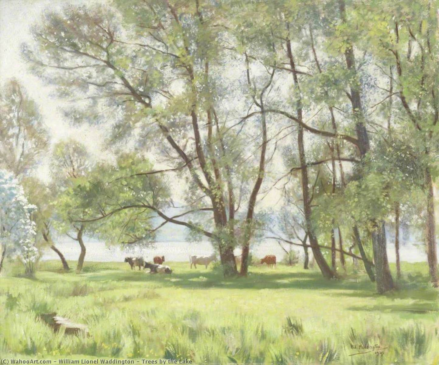 Trees by the Lake, Oil On Canvas by William Lionel Waddington